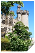 Arundel Castle and Grounds, Print