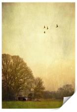 one day i will fly away, Print