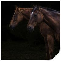 Two horses, Print