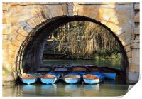 oxford rowing boats, Print