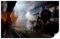 Steam engines 6998 and 6023 at Didcot, Print