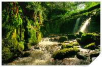 Waterfall on Vennford Brook, Print