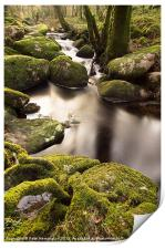 Becka Brook - Dartmoor, Print