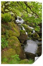 Waterfall on Dartmoor, Print