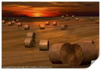 Harvest Sunset, Print
