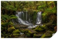 Horseshoe Falls, Mountfield National Pk, Tasmania, Print
