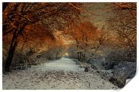 Winter Colour, Print