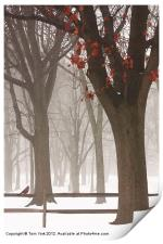WINTER IN THE WOODS, Print