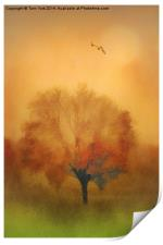 The Painted Tree, Print
