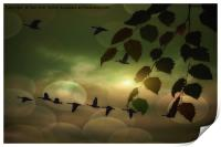 Geese In The Clouds, Print