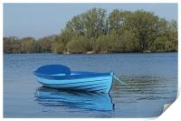 The blue boat, Print