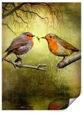 Robin Presents, Print