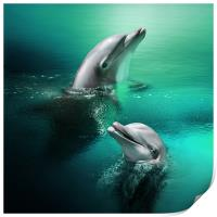 Playful Dolphins, Print