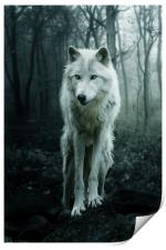 The White Wolf, Print