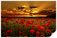 Sunset Poppies Fighter Command, Print
