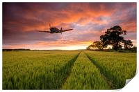 Spitfire Country, Print