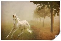 In the Mist, Print