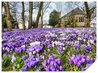 St Chads Church in Springtime.., Print