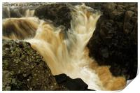 WATER FORCE, Print