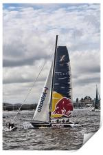 Extreme 40 Team Red Bull, Print