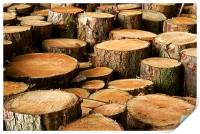 Logs and More Logs, Print