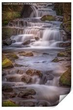 Lumsdale Paradise, Print