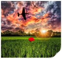 P40 Poppy Sunset, Print
