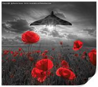 Delta Lady over the Poppies, Print