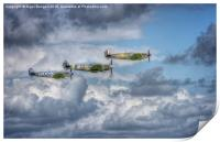 Battle of Britain Flypast at Goodwood, Print