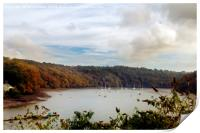The View From Malpas, Print