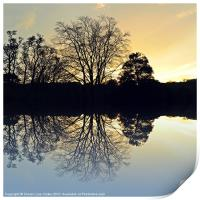 Evening reflections, Print