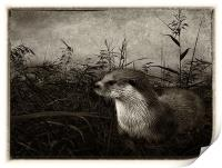 Otter (plate effect), Print