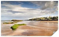 Reflections on St. Andrews, Print