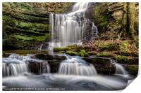 Scaleber Force, Print