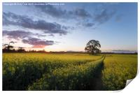 Day's Done at Kingston Lacy, Print