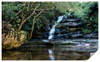 Somersby Falls in August, Print