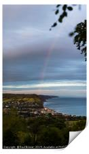 Sidmouth after the storm, Print