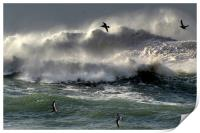 Waves on Clogher Beach, Print