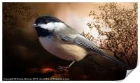 Black Capped Chickadee, Print