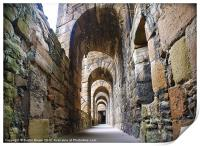 Linlithgow Palace Walkway, Print