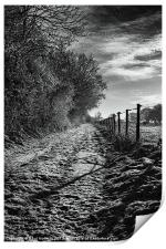 Snow Covered Track, Print
