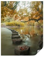 Stepping stones 1, Print