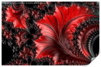 Red on Black Macro - A Fractal Abstract, Print