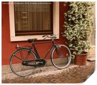 The Bicycle , Print