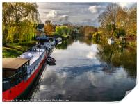 View Upriver From Whitchurch Bridge, Print