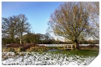 A Cold Morning in Tidmarsh Meadows, Print
