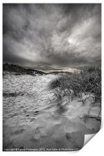 The view to the dunes, Print