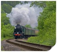 Lord Nelson - The Watercress Line, Print