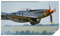 "P-51D Mustang ""Nooky Booky IV"" - Duxford, Print"