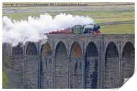 Flying Scotsman At The Ribblehead Viaduct, Print